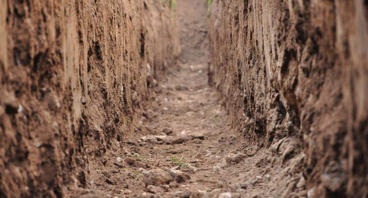 Beneath Soil Surface